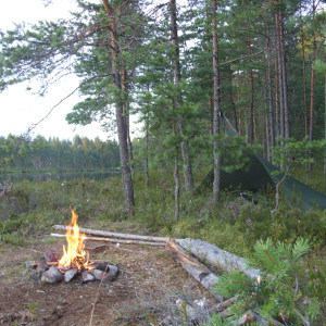 Basic Bushcraft – 2 day